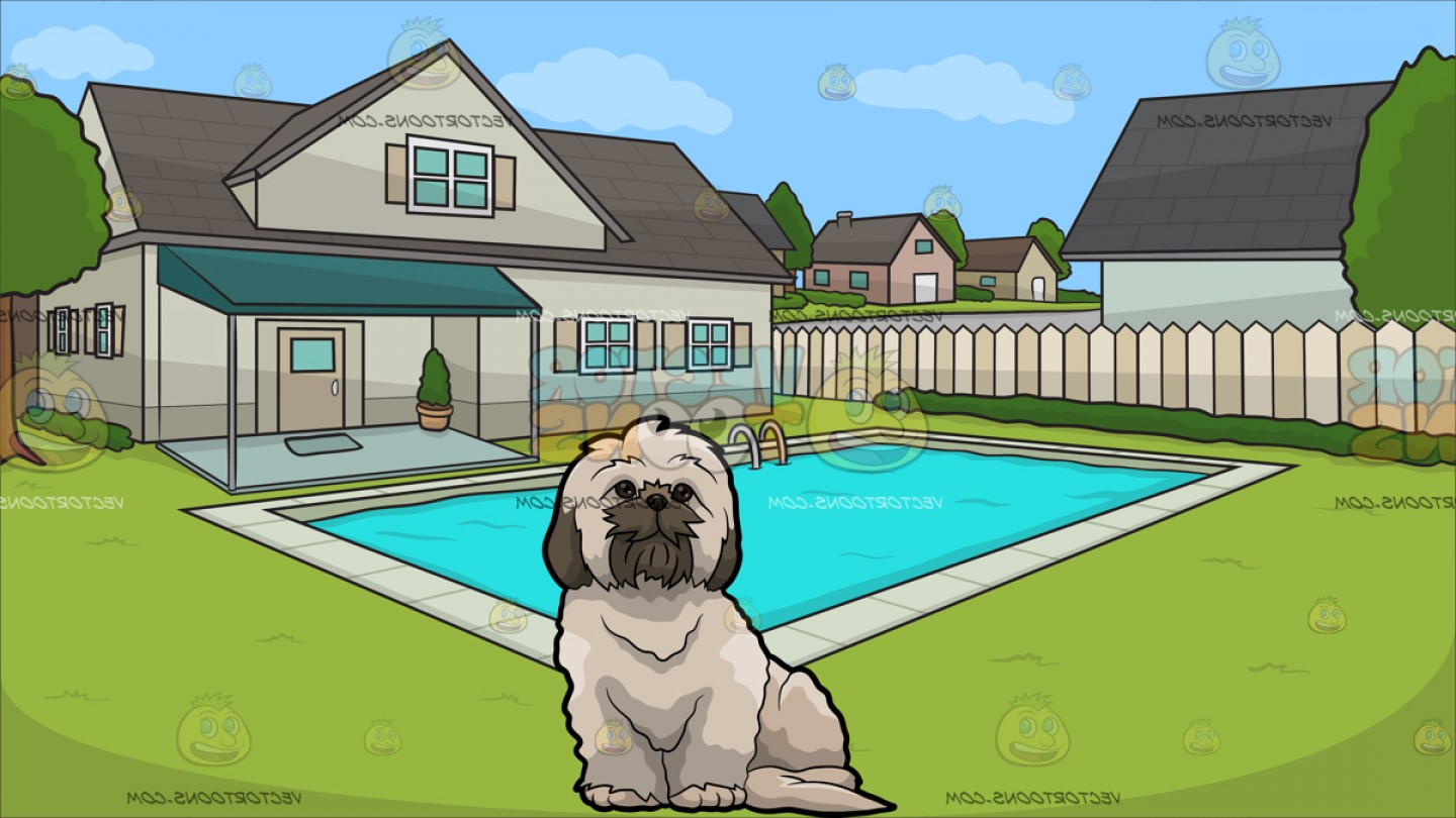 Shih Tzu Clipart-Vector: A Fluffy Shih Tzu Dog With A Suburban House With Swimming Pool Background