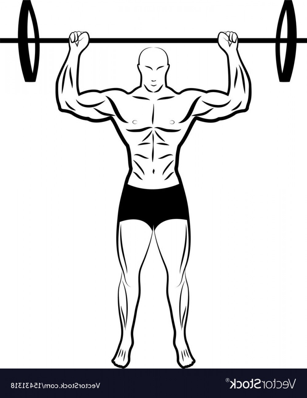 Vector Barbell Press: A Man Lifting A Barbell Athlete Vector