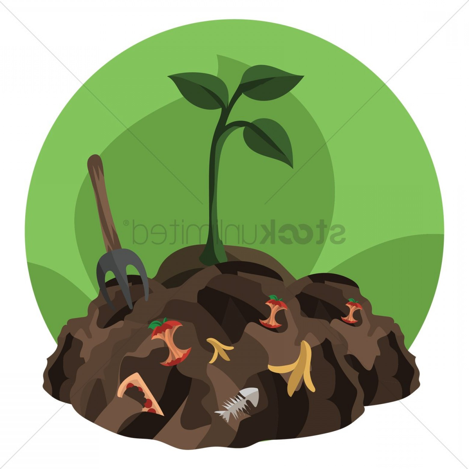 Chocolate Vector Plant: A Plant Grown In The Waste Mud