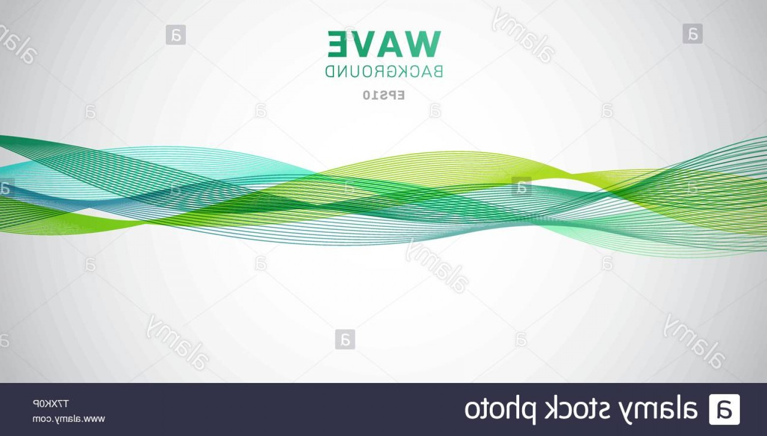 Vector Smooth Green: Abstract Smooth Green Waves Lines Design On White Background Vector Illustration Image