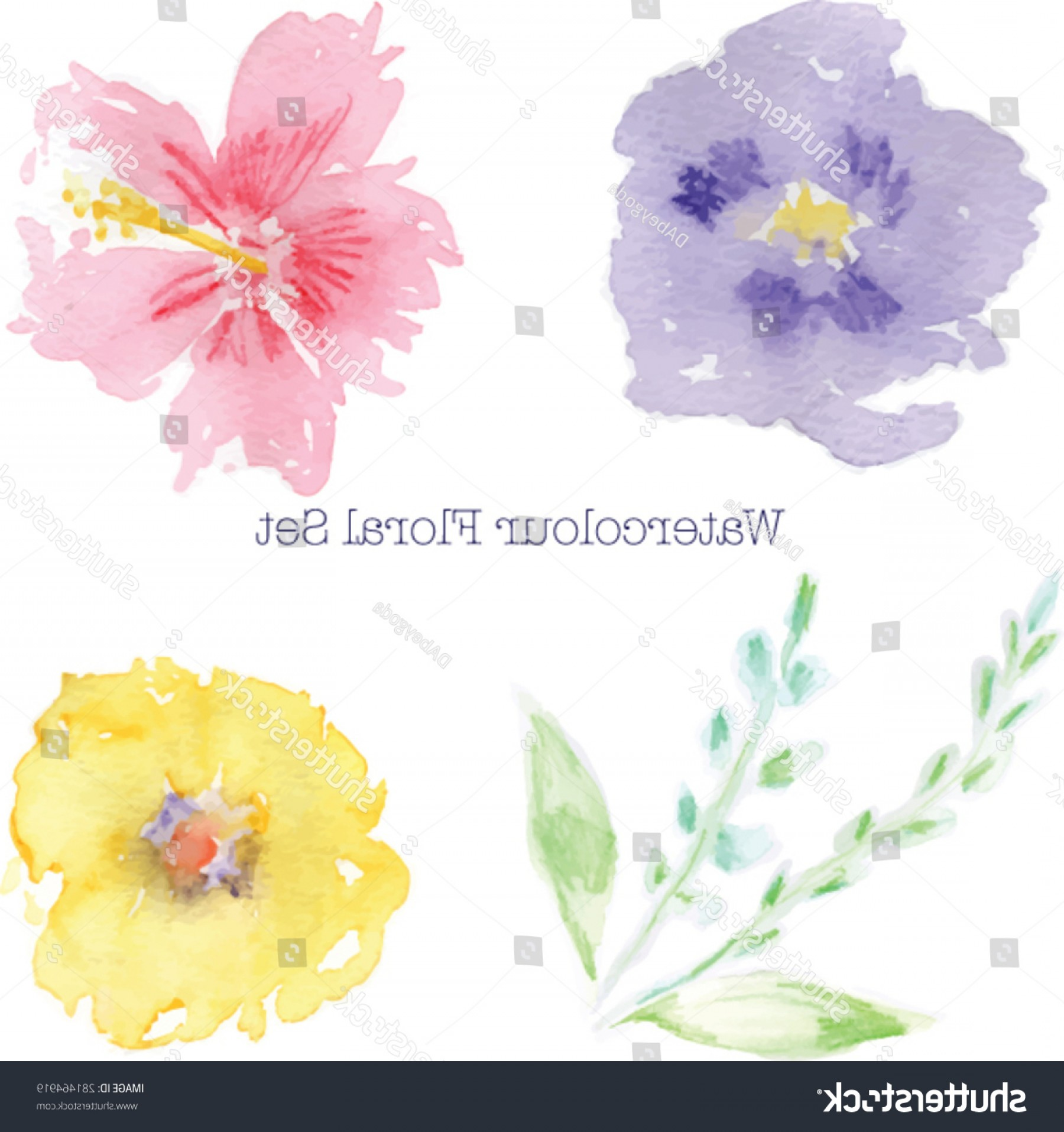 High Resolution Vector Watercolor Flowers: Abstract Watercolor Flowers High Resolution Image