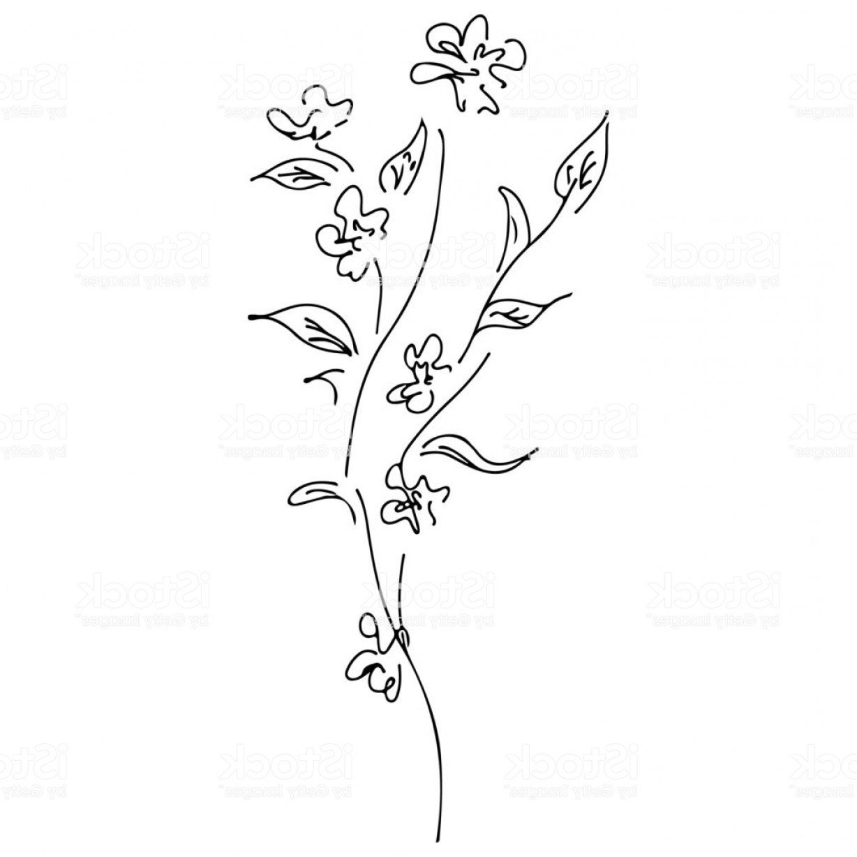 Wildflowers Outline Vector: Abstract Wildflowers Outline Icon Isolated On White Background Creative Luxury Gm