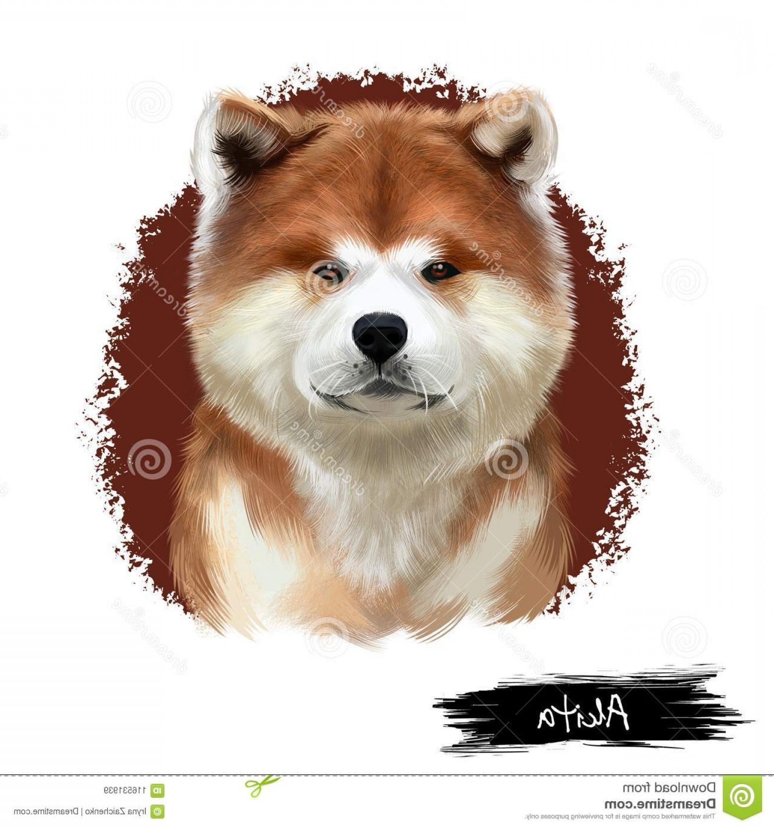 Double Boxer Dog Vector: Akita Breed Digital Art Illustration Isolated White Cute Domestic Purebred Animal Large Breed Dog American Akita Akita Breed Image