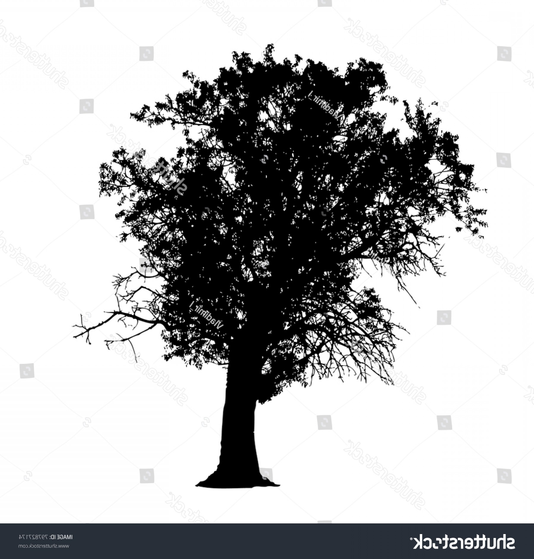 Almond Tree Silhouette Vector Illustration Isolated Createmepink