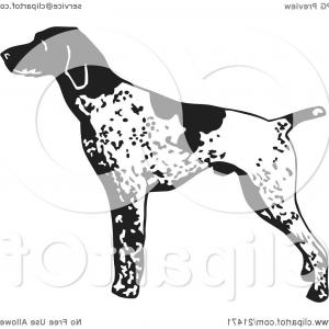 Pointer Dog Vector: Photoenglish Pointer Hunting Dog Side View Black And White Illustration