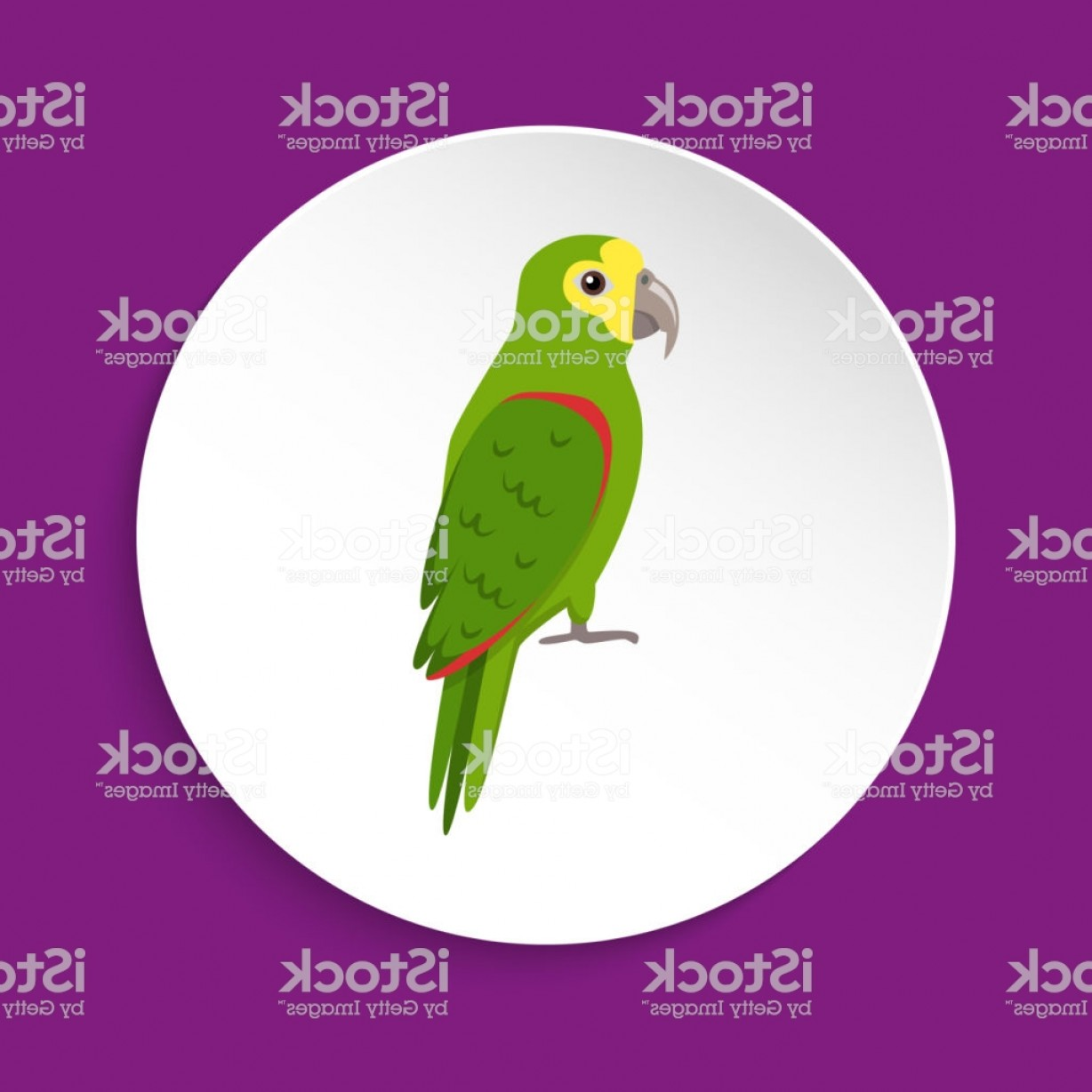 Amazon Icon Vector: Amazon Parrot Icon In Flat Style Gm