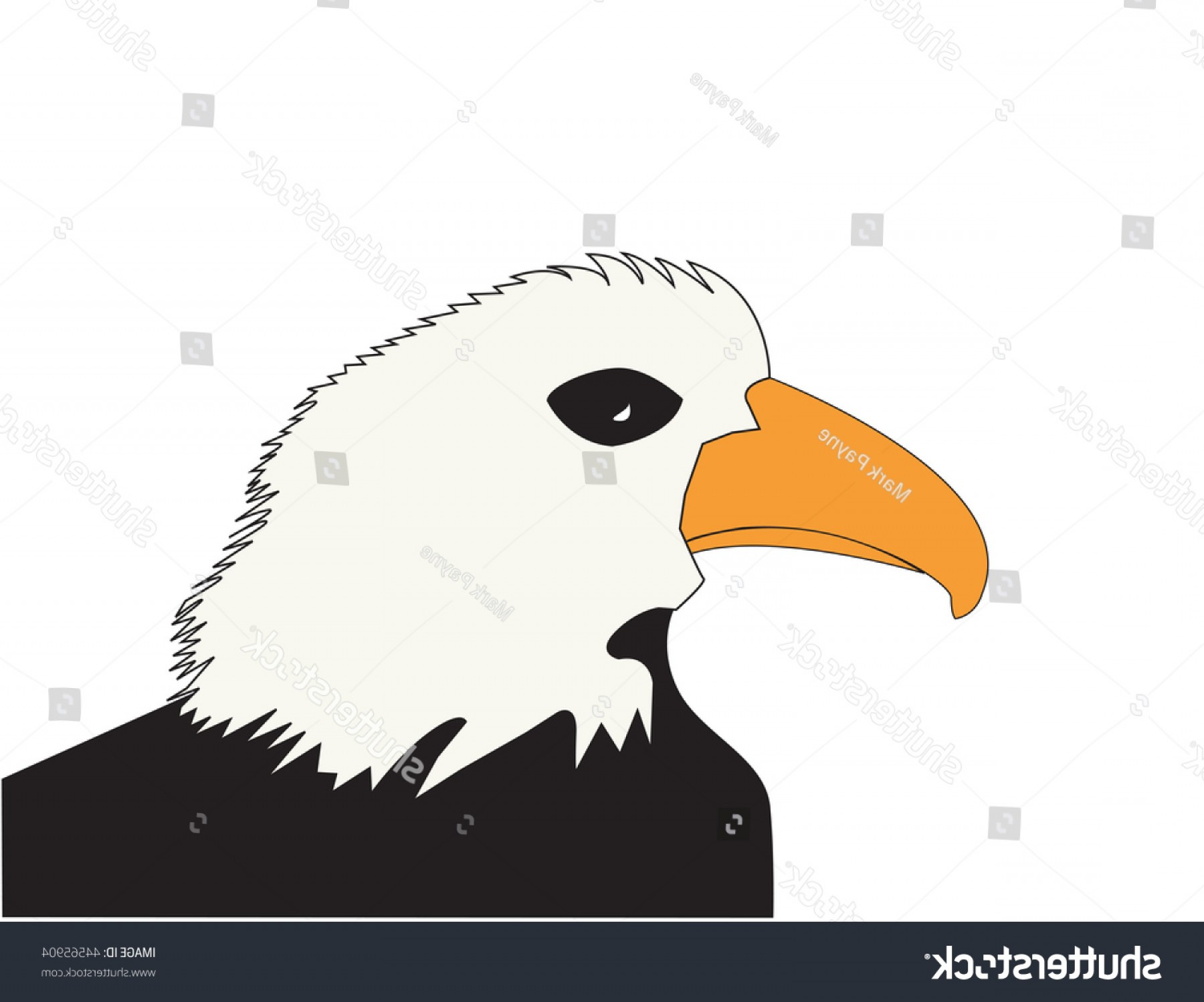 Patriotic Bald Eagle Vector: American Bald Eagle Patriotic Animal Symbol