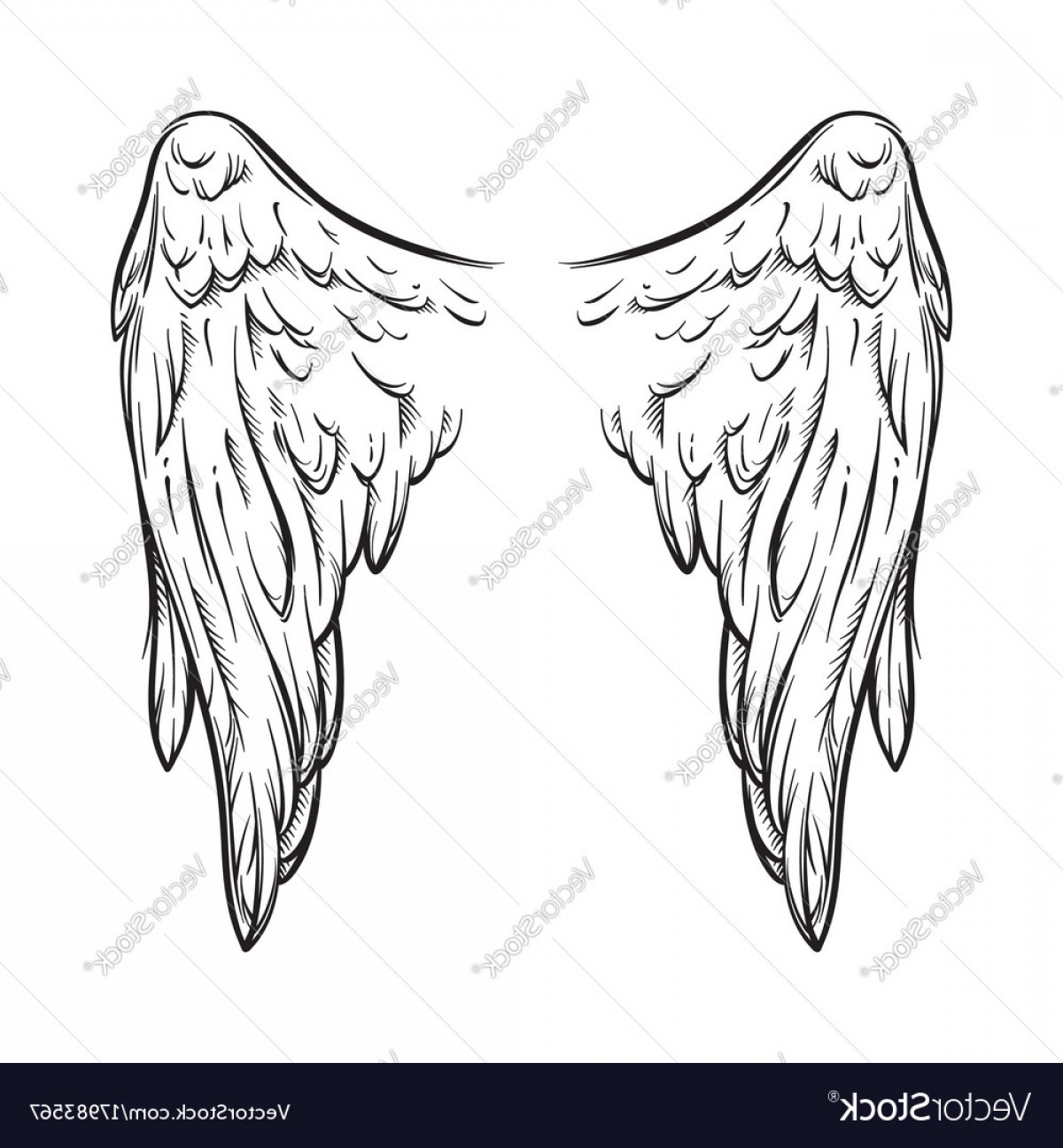 Angel Wings Tattoo Tribal Vector: Angel Wings Isolated On White Tattoo Design Vector
