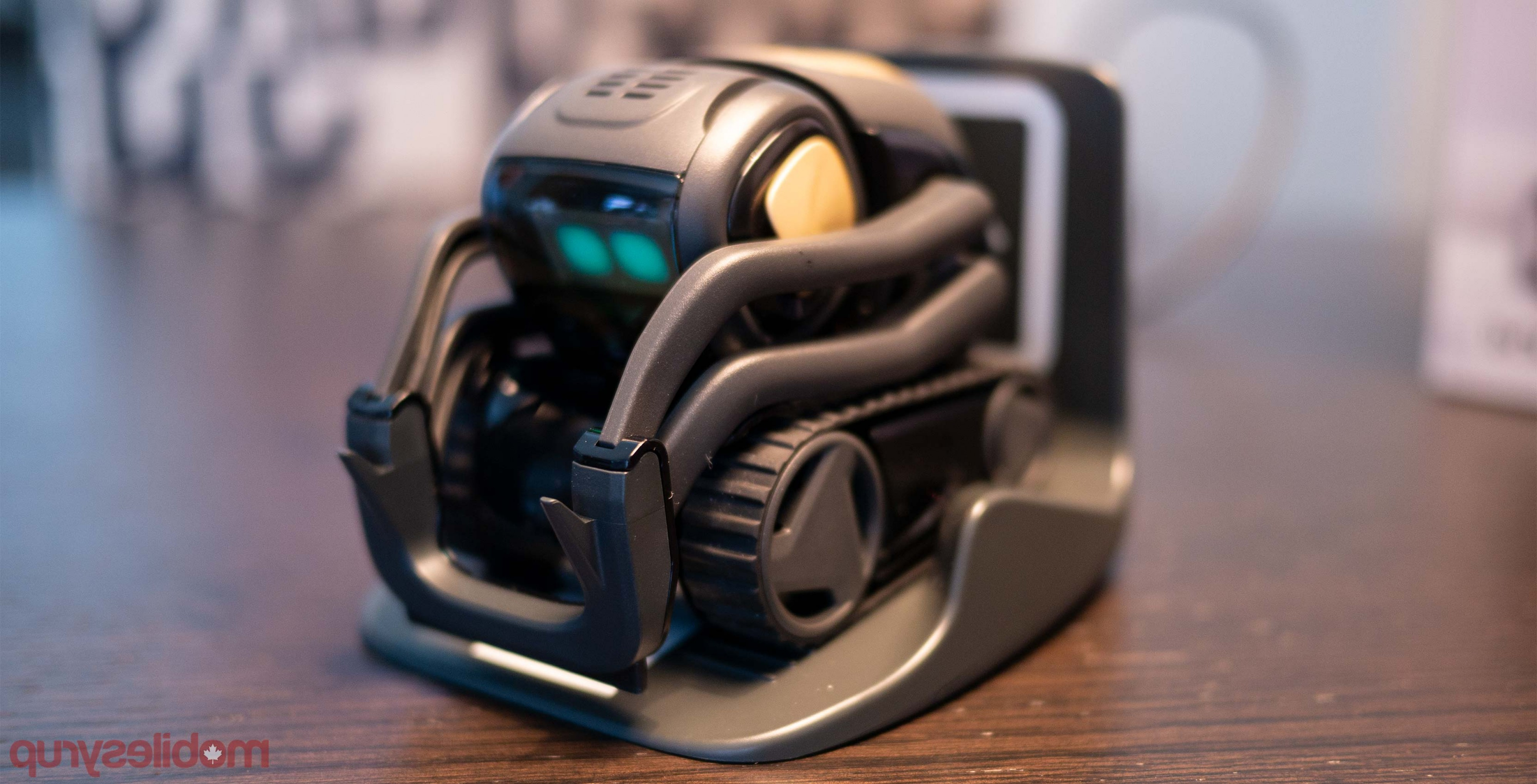 Vector Lite Charger: Anki Vector Hang Out With You