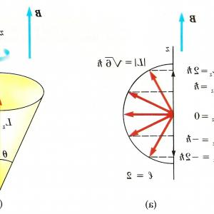 Angular Momentum Vectors Drawing: Why Does A Ballerina Speed Up When She Pulls In Her Arms