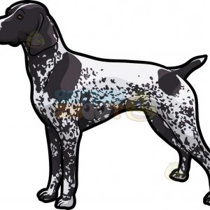 Pointer Dog Vector: Pointer Dog Vector Illustration Style Flat