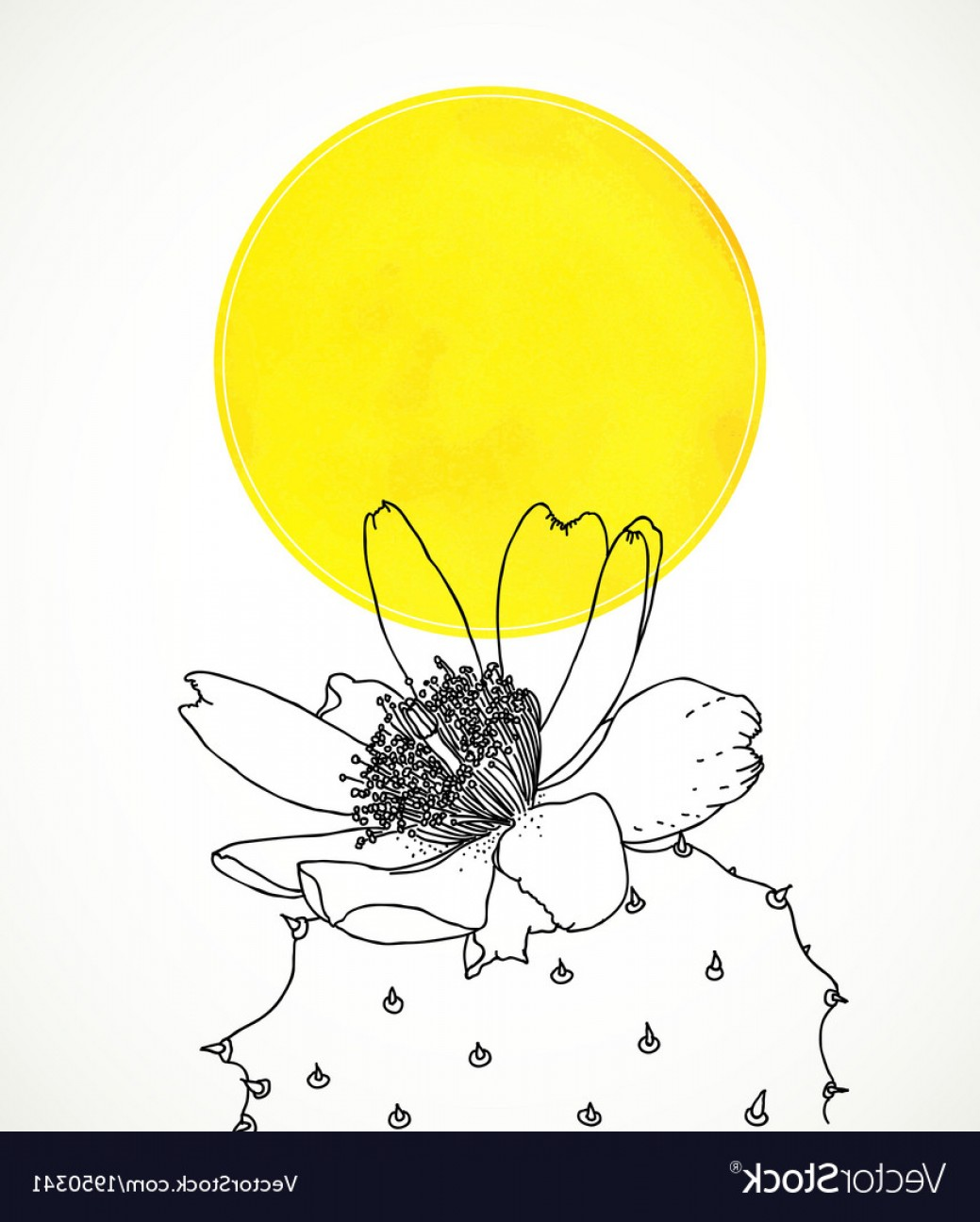 Cactus And Flower Vector: Ard With Botanical Drawing Of Cactus Flower Vector