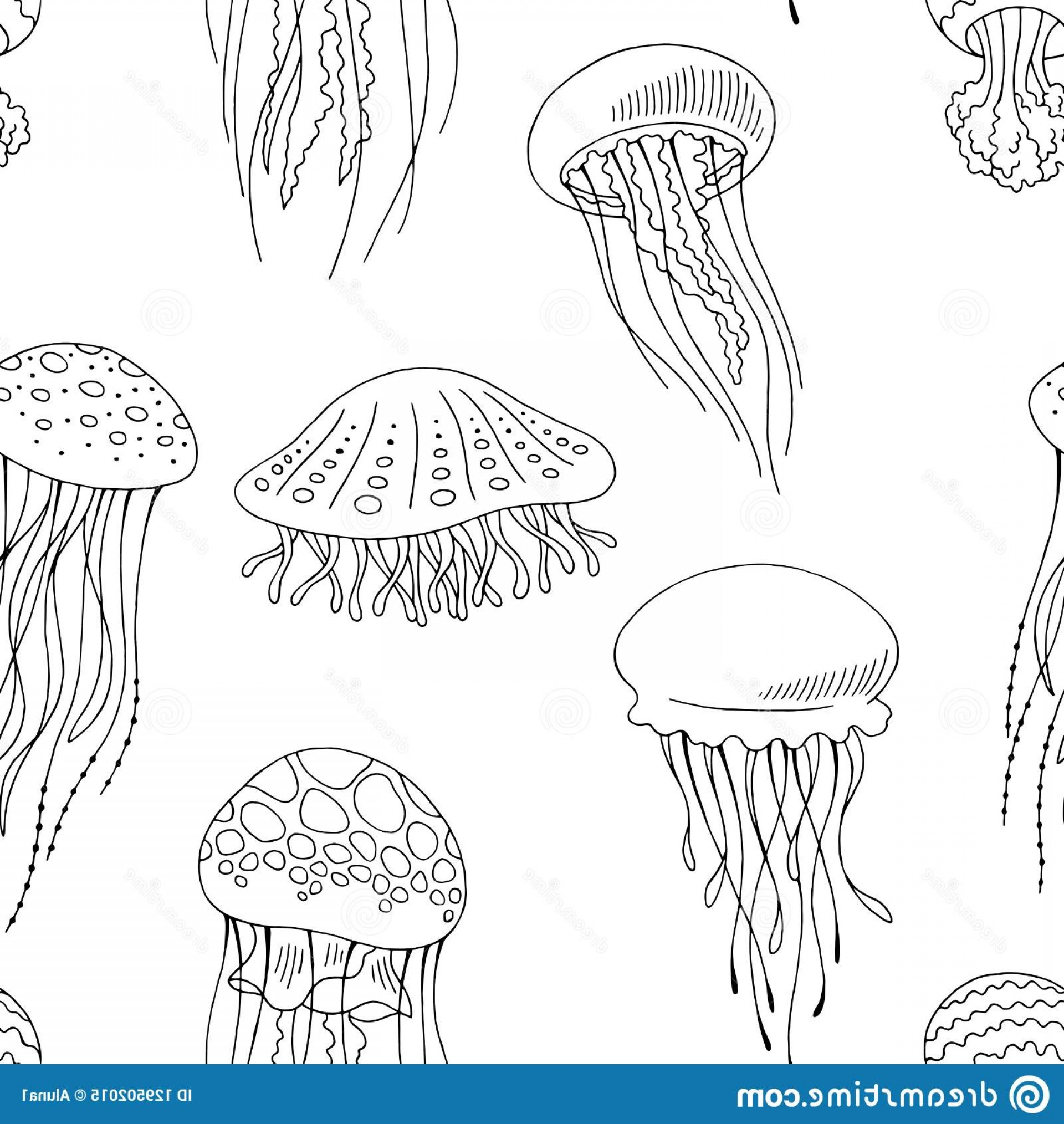 Jelly Fish Graphic Vector: Arugula Herb Graphic Art Black White Isolated Illustration Image