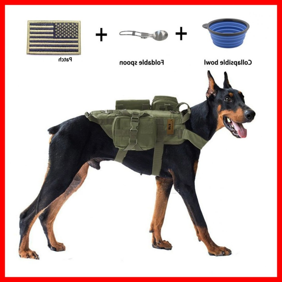 Tactical Vector: Astonishing Ejg Military Tactical Service Dog Training Vest Molle Harness Of Cute Trend And Vector Ideas