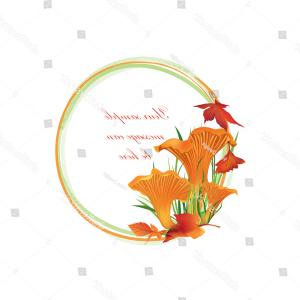Chanterelle Mushrooms Vector: Autumn Frame Mushrooms Chanterelle Mushroom Vector