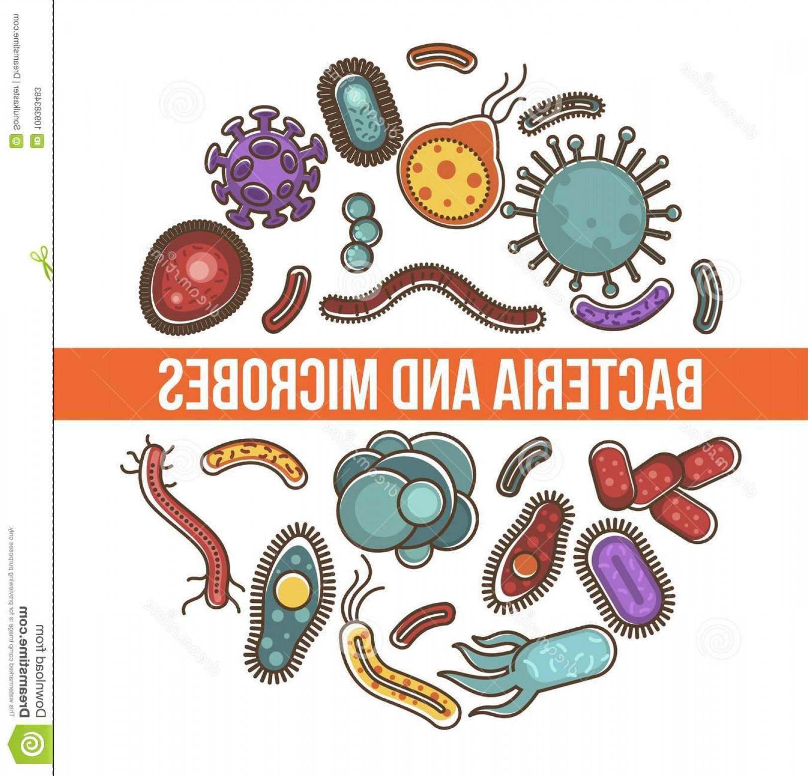 Vector Organisms On A Person: Bacteria Microbes Science Poster Biological Organisms Simplest Micro Bodies Short Antennas Various Shapes Circle Image