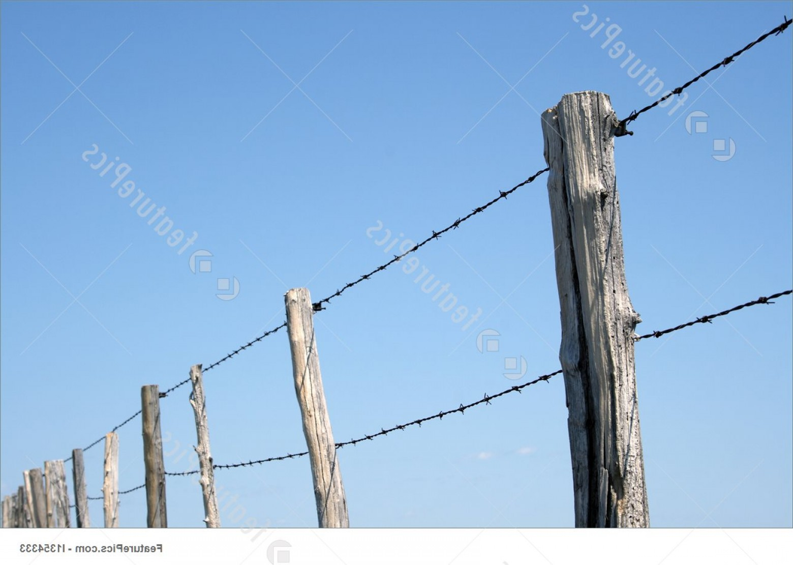 Fence Post Barbed Wire Vector Clip Art: Barbed Wire Farm Fence Against Blue Sky Picture