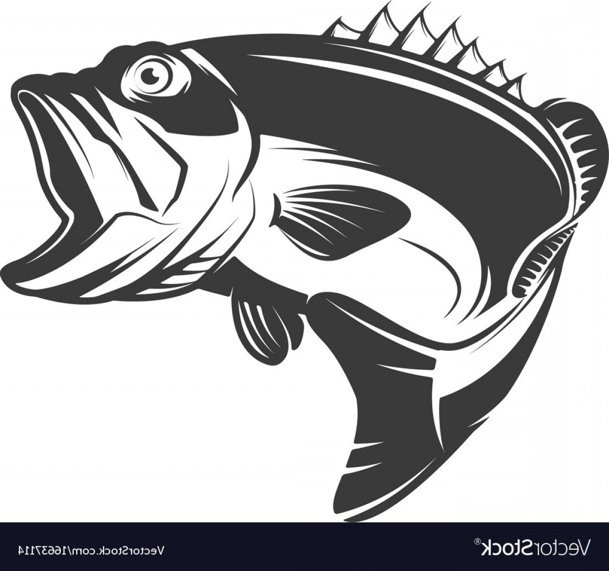 Largemouth Bass Silhouette Vector: Bass Fish Icon Isolated On White Background Vector