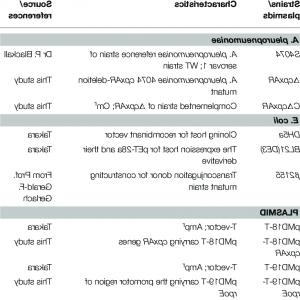 Kanamycin Vector Pet: A Construction Of Plasmids The Nodf Gene Was Obtained From The Peta Derivative Pmpfig