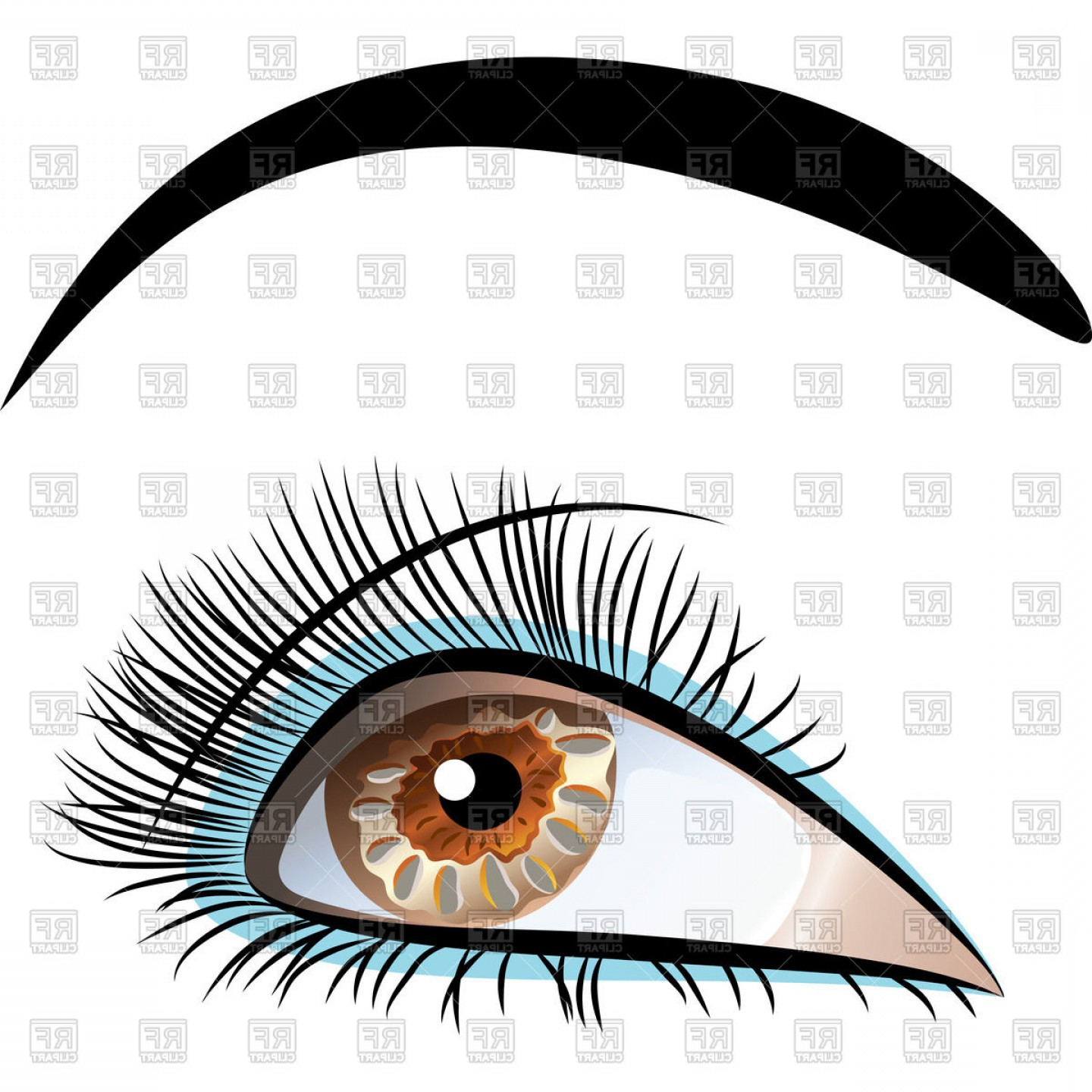 Top Eye Lashes Vector: Beautiful Brown Eye With Long Eyelashes And Black Eyebrows Vector Clipart