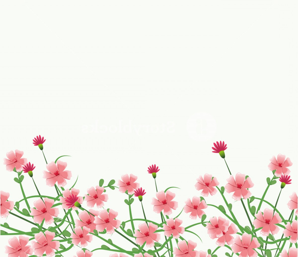 Beautiful Flowers Vector Graphic: Beautiful Flowers Frame Over White Background Vector Illustration Graphic Design Bmpwcmxrbxjikhdv