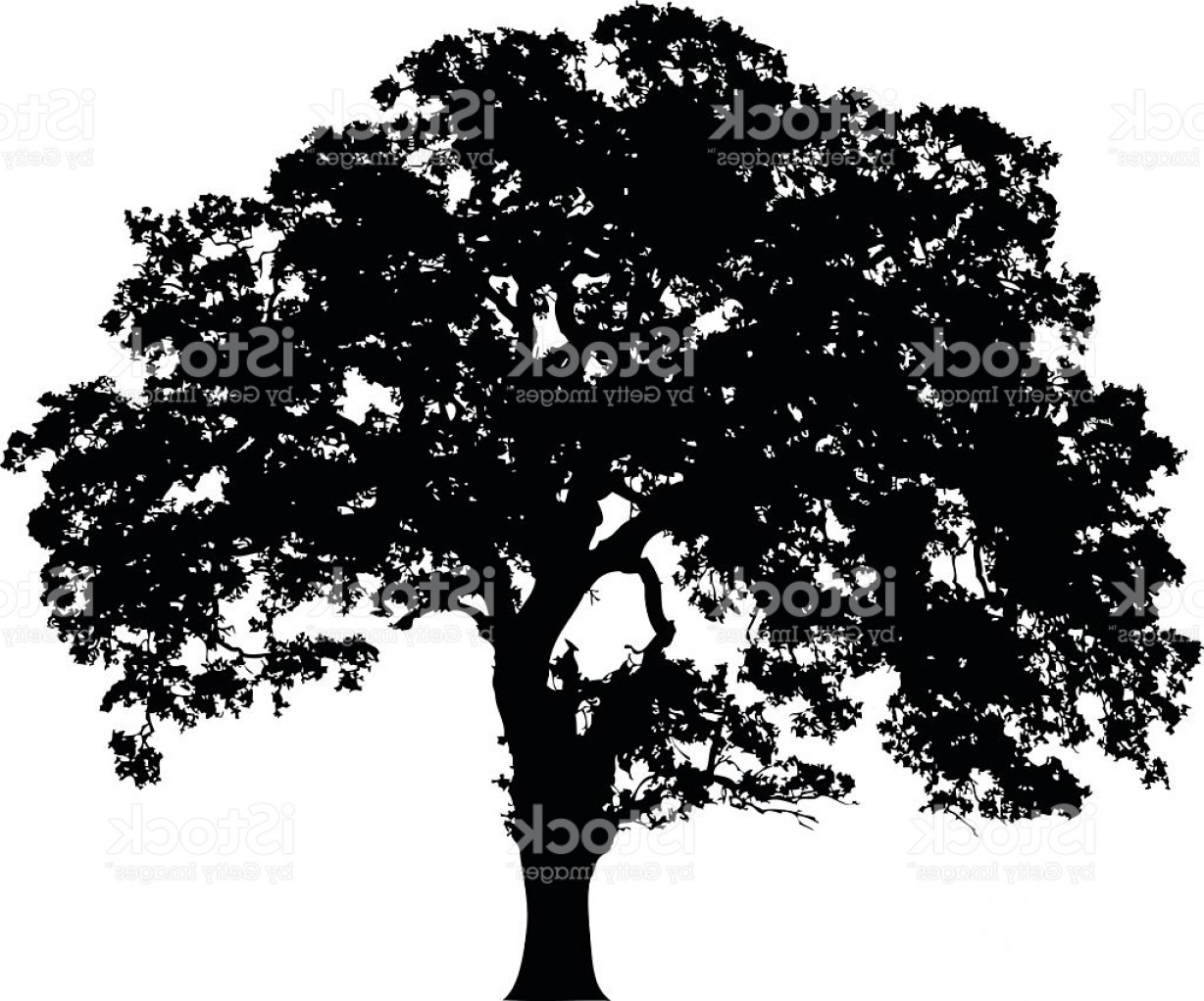 Oak Tree Silhouette Vector Graphics: Beautiful Vector Tree Silhouette Icon For Websites Gm