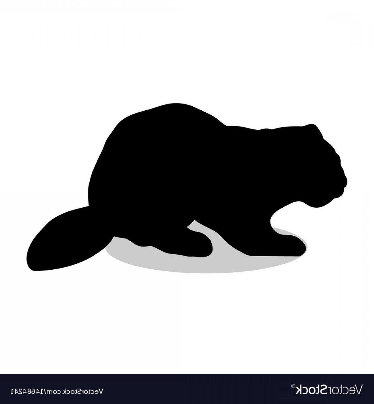 Vector Silhouette Beaver: Beaver Wildlife Black Silhouette Animal Vector