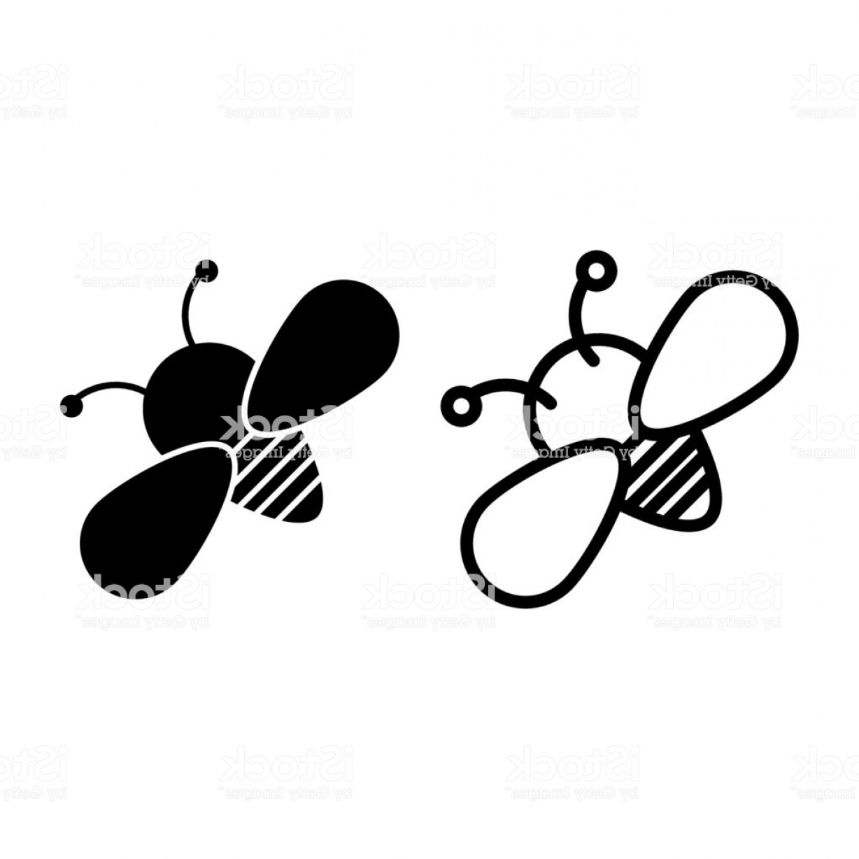 Bee Outline Vector: Bee Line And Glyph Icon Insect Vector Illustration Isolated On White Honey Bee Gm