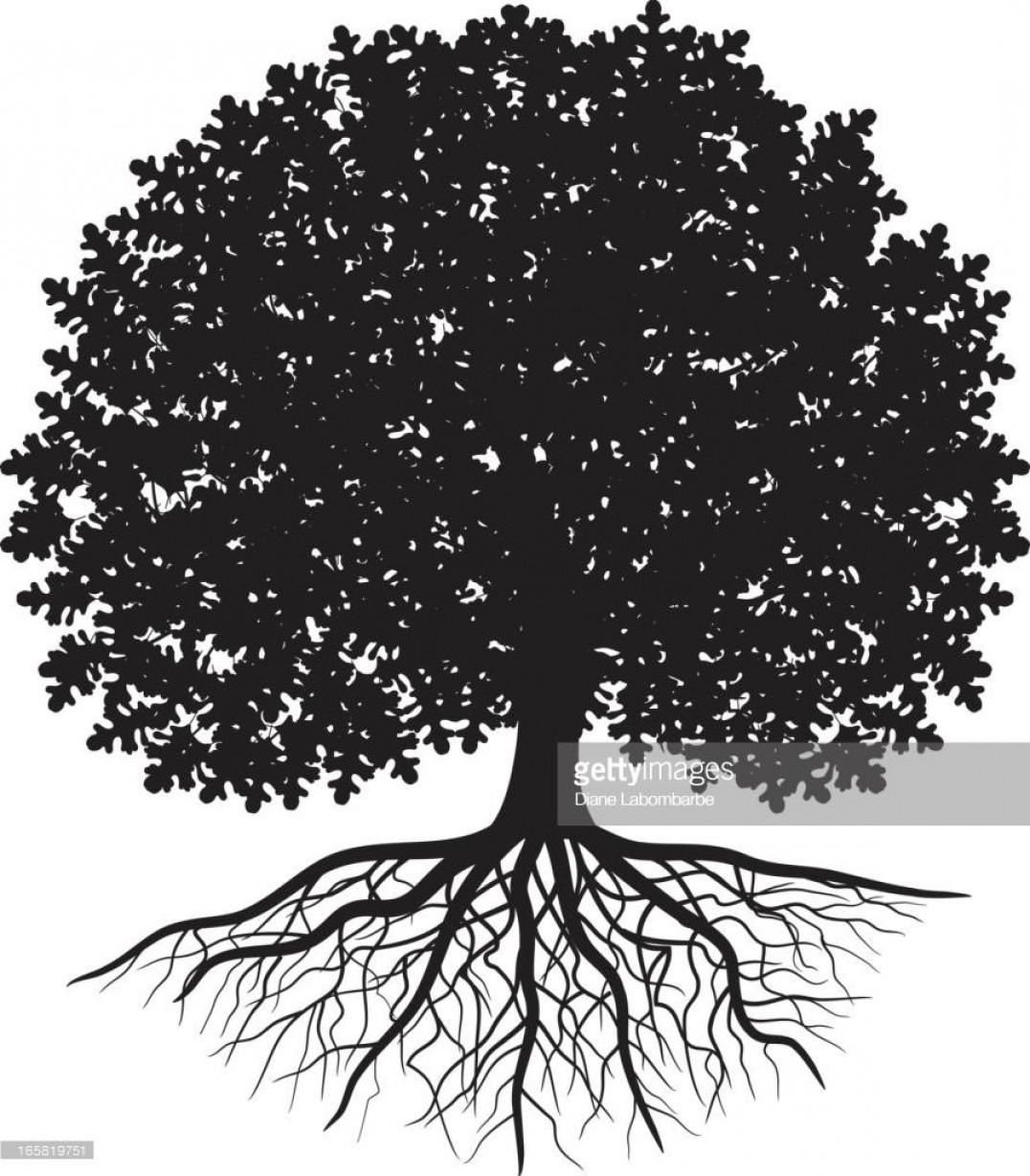 Oak Tree Silhouette Vector Graphics: Best Hd Black Silhouette Of Oak Tree With Leaves And Visible Roots Vector Pictures