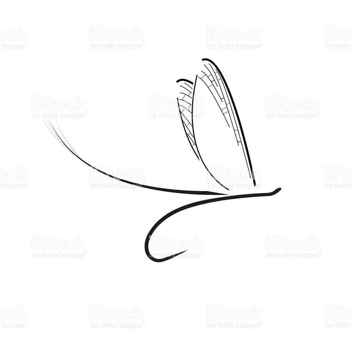 Detailed Vector Art Fly Fisherman: Best Hd Fly Fisherman Drawing Vector Design