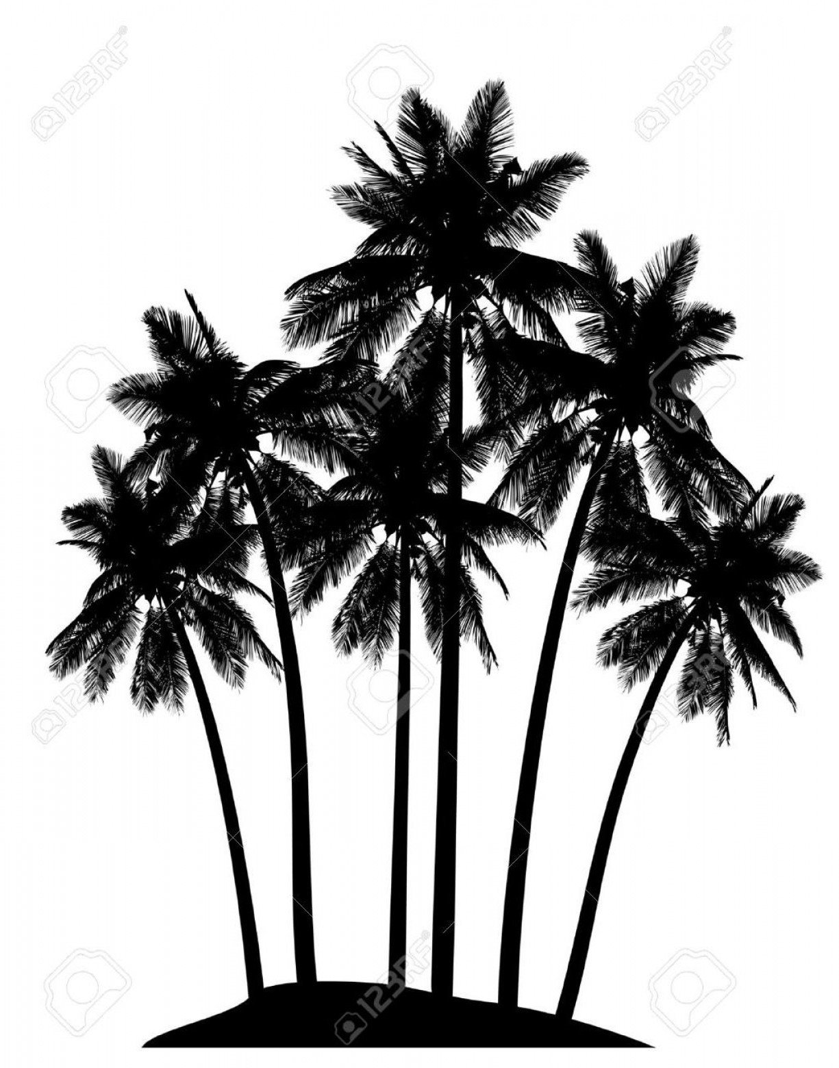 Watercolor Palm Tree Vector: Best Hd Free Palm Tree Vector Photos