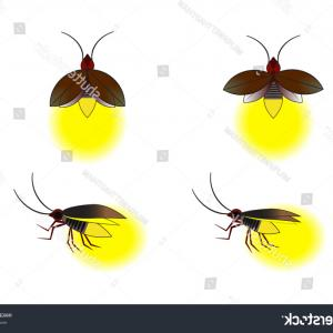 Vector Insect Light: Beautiful Firefly Spread Wings Light End