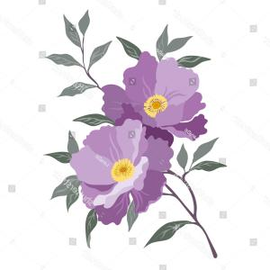 Lilac Vector Drawing: Beautiful Flower Rosehip Lilac Vector Illustration