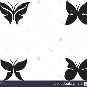Butterflly Vector Art: Beauty Butterfly Vector Icon Design Image
