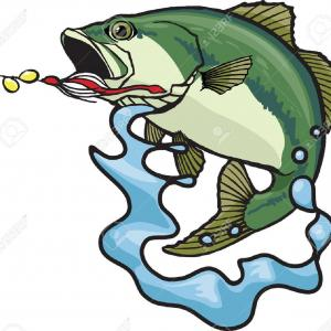 Largemouth Bass Silhouette Vector: Best Free Illustrated Largemouth Bass Vector And High Resolution Files Available Image