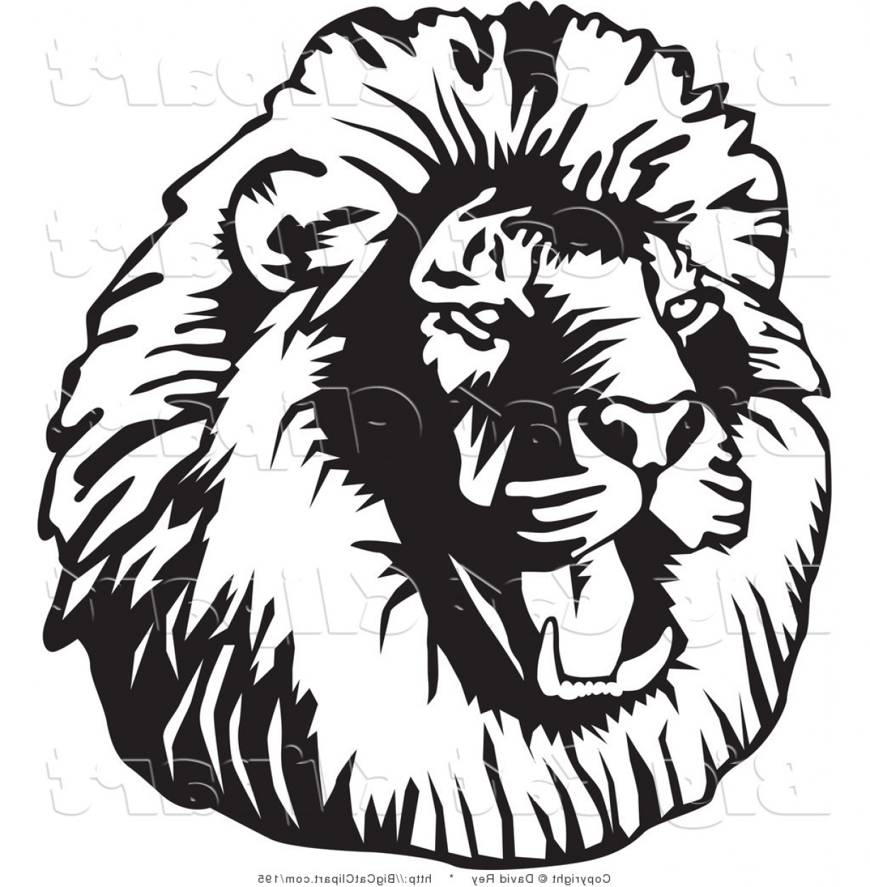 Malee Cat Head Silhouette Vector: Big Cat Vector Clipart Of A Black And White Roaring Male Lion Head Facing Left By David Rey
