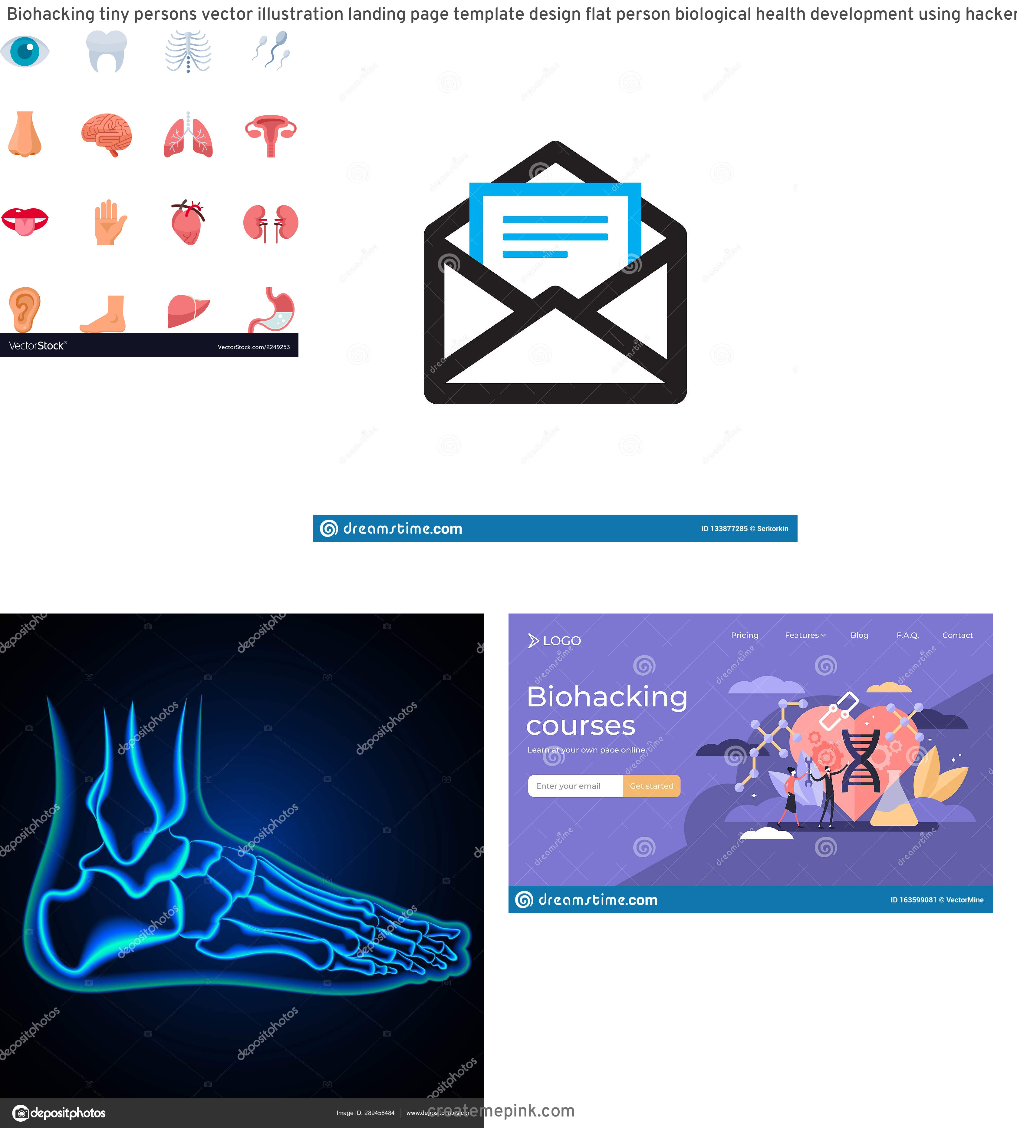 Vector Email Anatomy: Biohacking Tiny Persons Vector Illustration Landing Page Template Design Flat Person Biological Health Development Using Hacker Image
