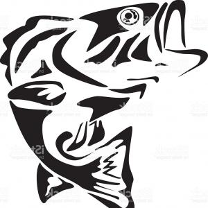 Fish Vector Graphic: Stock Photo Traditional Koi Fish Tattoo Black And White Illustration