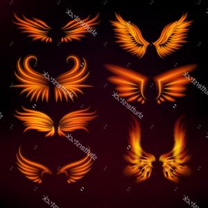 Torn Angel Wings Vector: Set Vector Ripped Pieces Lined Paper