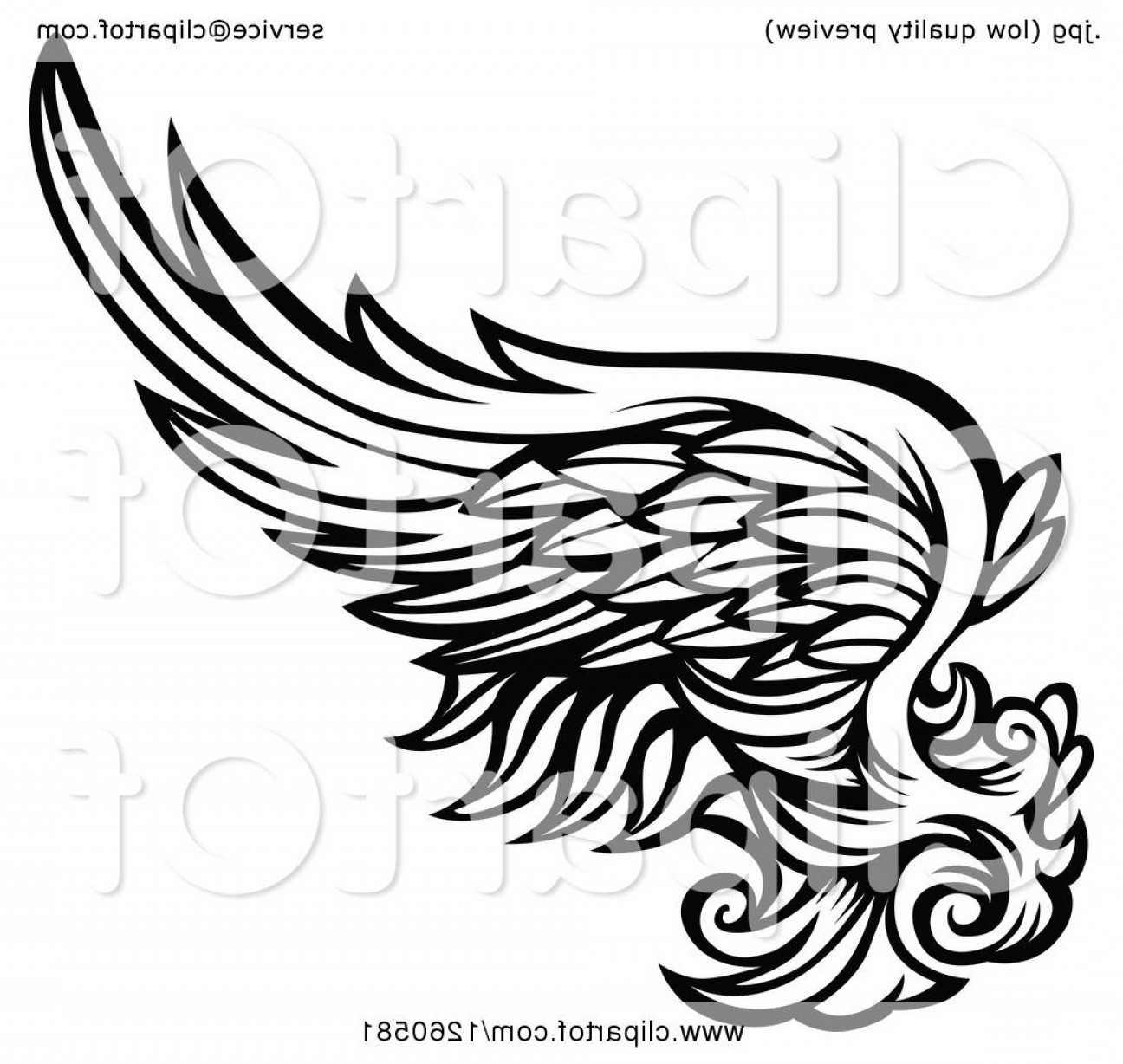 Vector Hi Res Black And White Wing: Black And White Feathered Wing