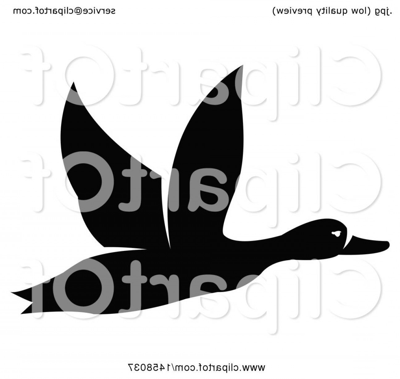 Flying Duck Outline Vector: Black And White Flying Duck