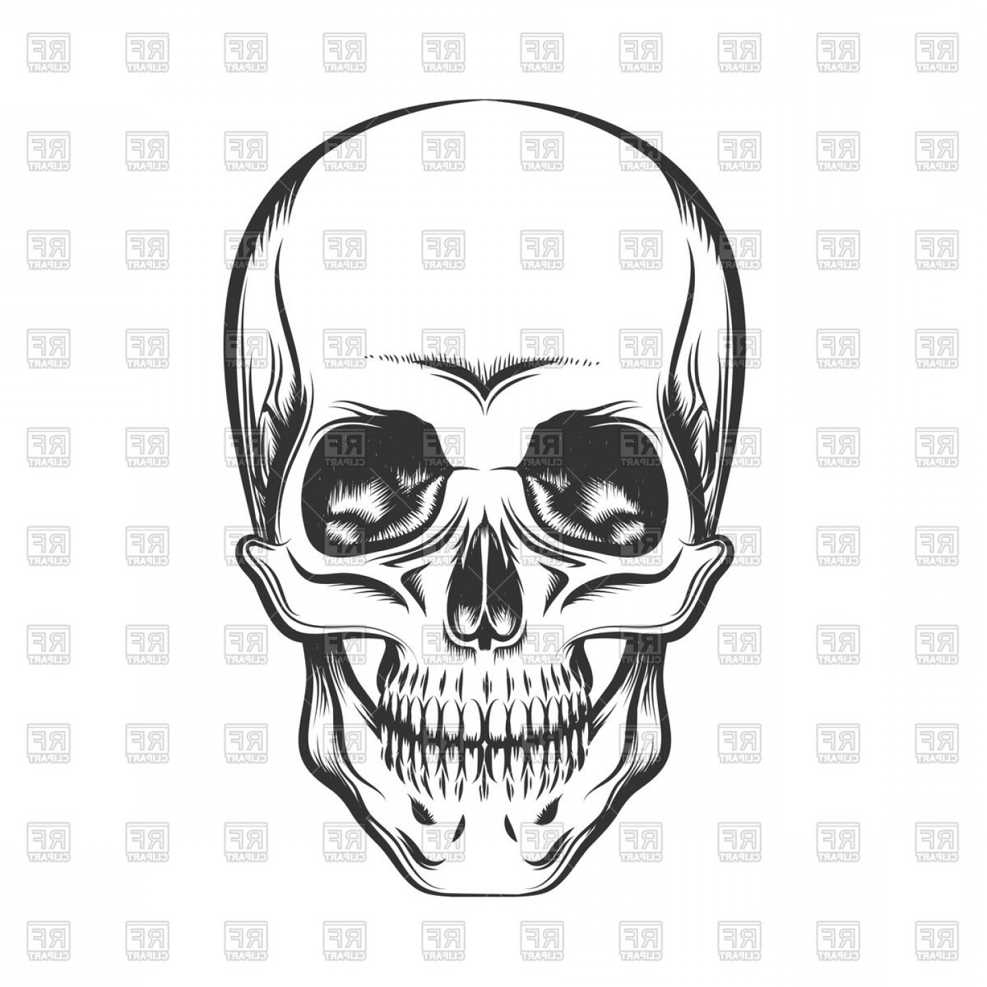His And Hers Skulls Vector: Black And White Human Skull Vector Clipart