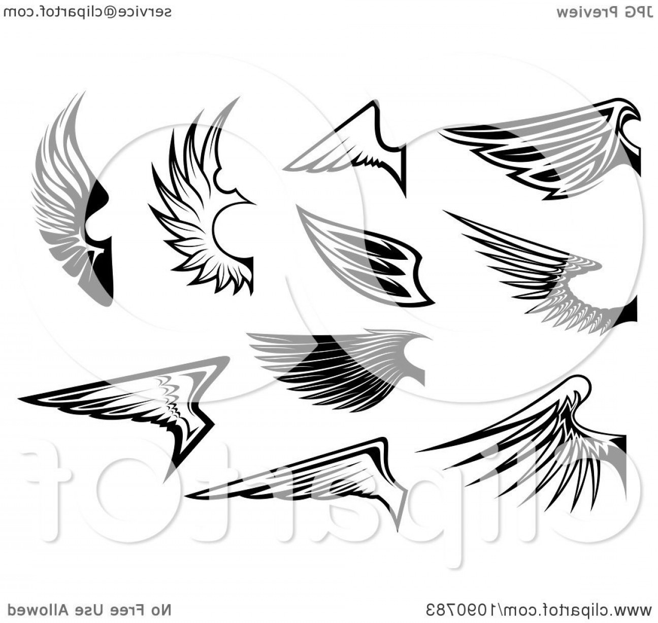 Vector Hi Res Black And White Wing: Black And White Wing Designs