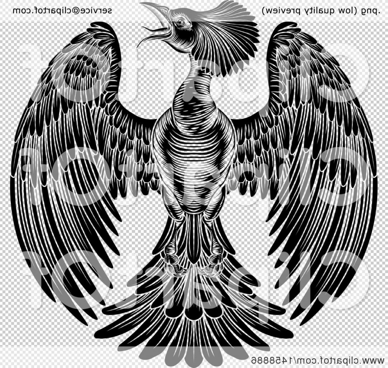 Firebird Vector Transparent Background: Black And White Woodcut Or Engraved Phoenix Firebird