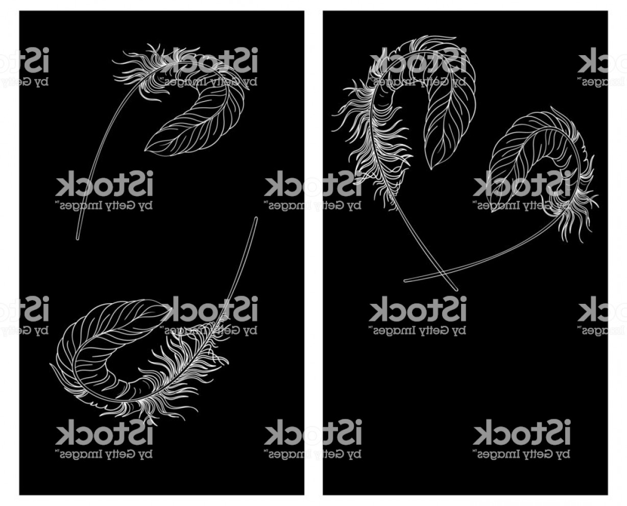 Carnival Vector Feather Art: Black Carnival Backgrounds With White Feathers Gm