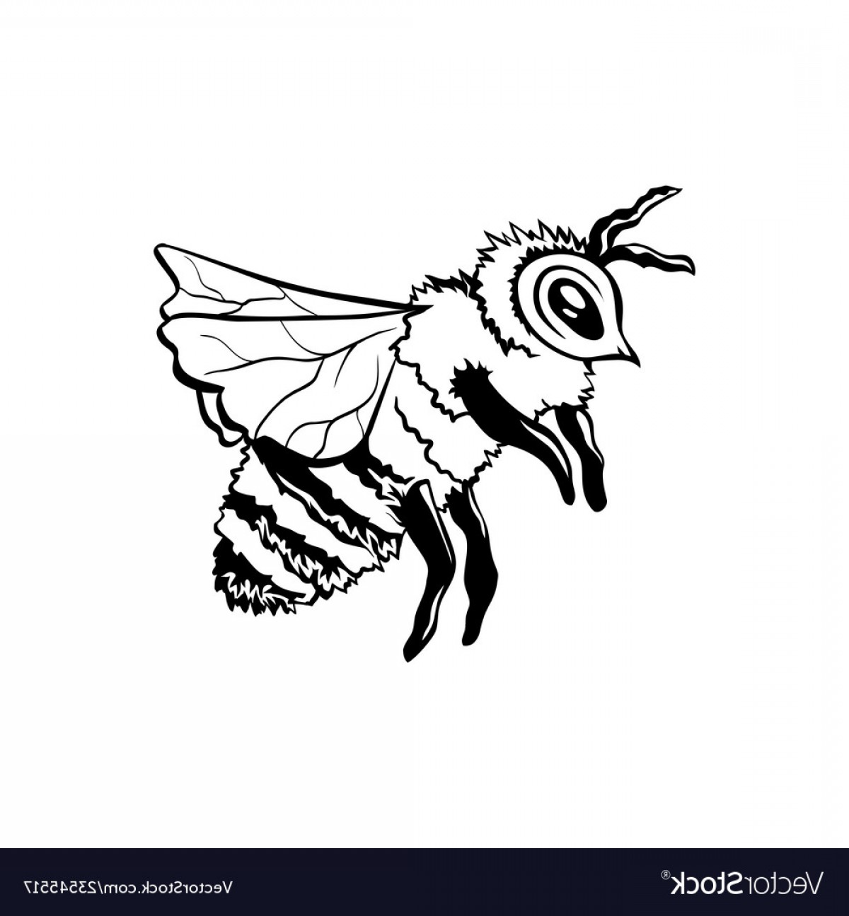 Bee Outline Vector: Black Outline Sketch Of Honey Bee Vector