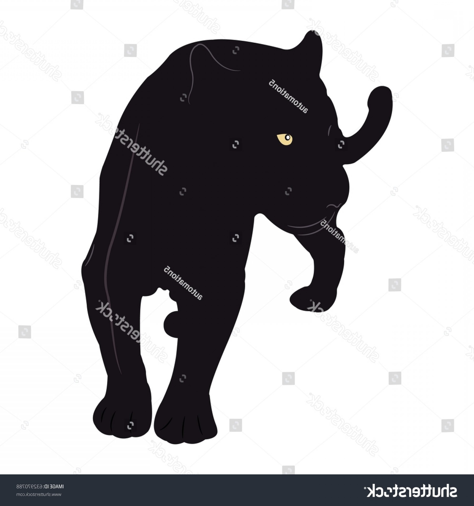 Panther Vector: Black Panther Vector Illustration On White