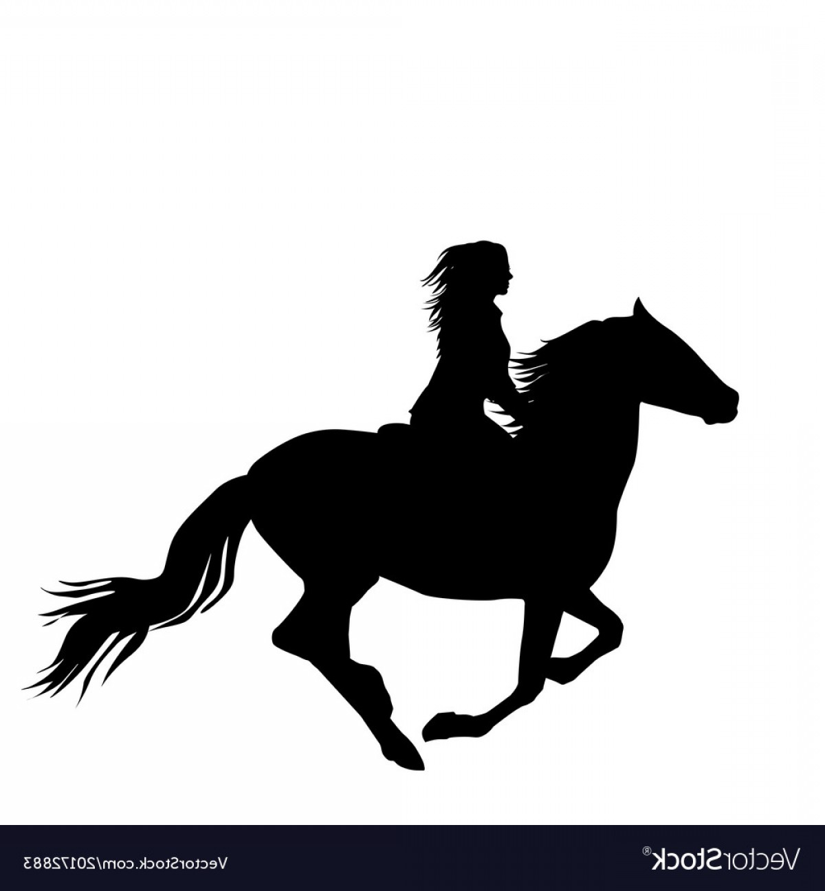 Horse And Rider Vector Art: Black Silhouette Of A Woman Rider A Running Horse Vector