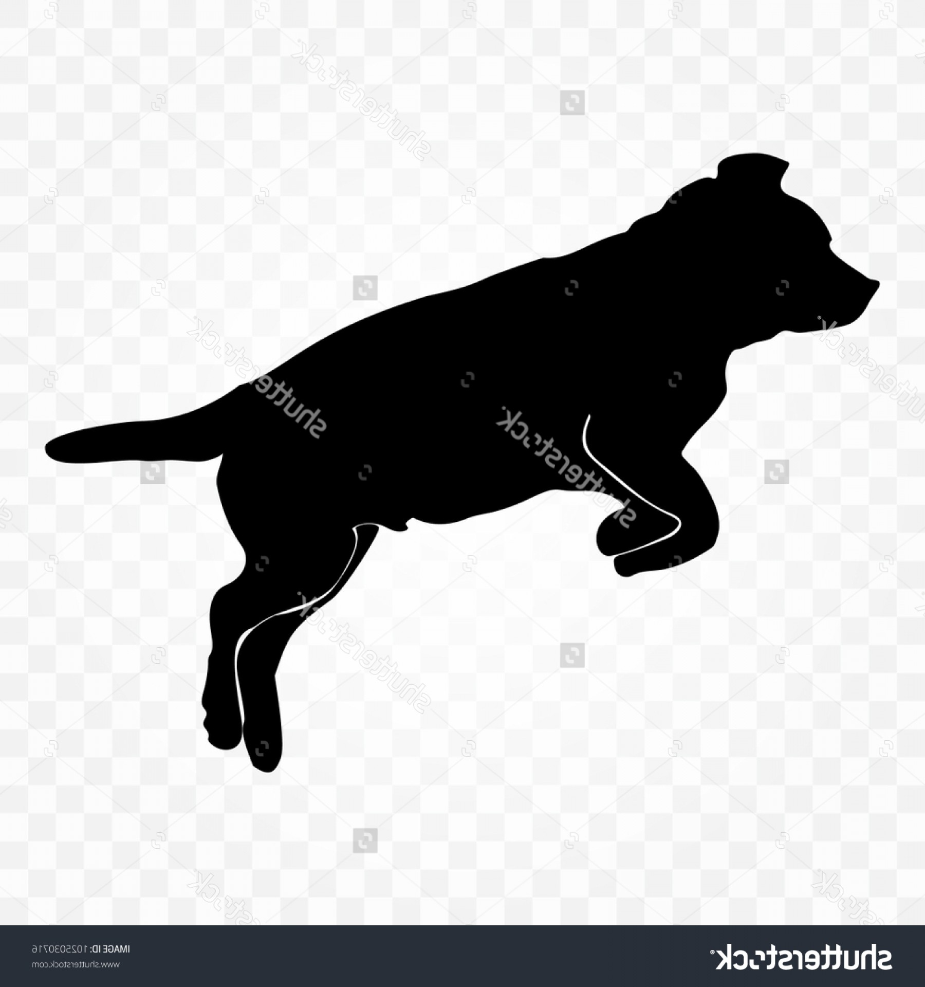 Labrador Silhouette Vector: Black Silhouettes Dog On Transparent Background