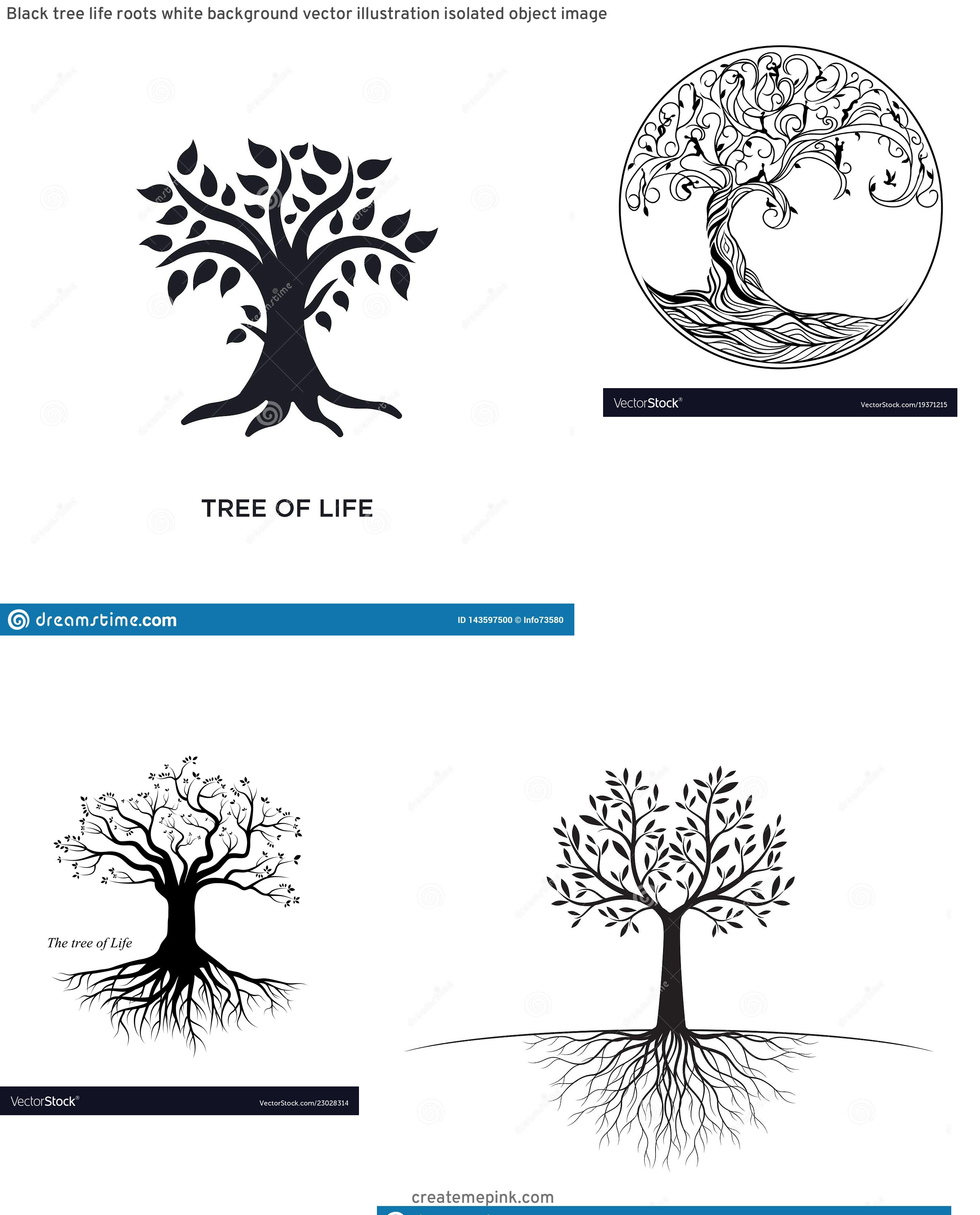 Vector Images Black Tree Of Life: Black Tree Life Roots White Background Vector Illustration Isolated Object Image